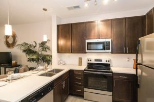 1701-North-Apartment-Hansborough-Kitchen