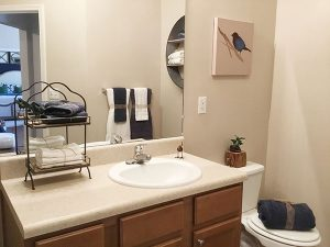 audubon-place-apartments-bathroom
