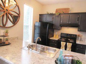 Greensboro Brassfield Park Apartments kitchen