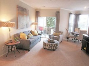 Greensboro Brassfield Park Apartments living room